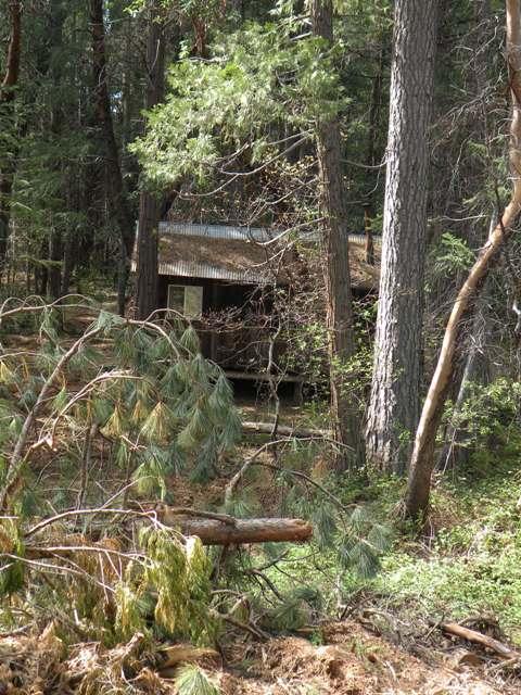 men's cabin